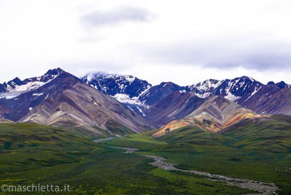Panorama al Denali National Park