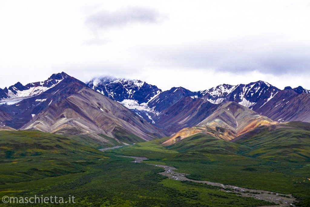 Panorama al Denali National Park